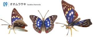 Papercraft recortable de la Mariposa Sasakia Charonda. Manualidades a Raudales.