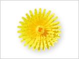 Papercarft recortable de la flor Diente de león. Manualidades a Raudales.