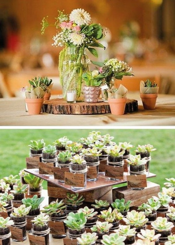 Souvenirs originales creados con plantas