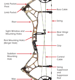 bow diagrams hybrid cam bow bear archery compound bow 2014 user manual page 11 40 [ 954 x 1475 Pixel ]
