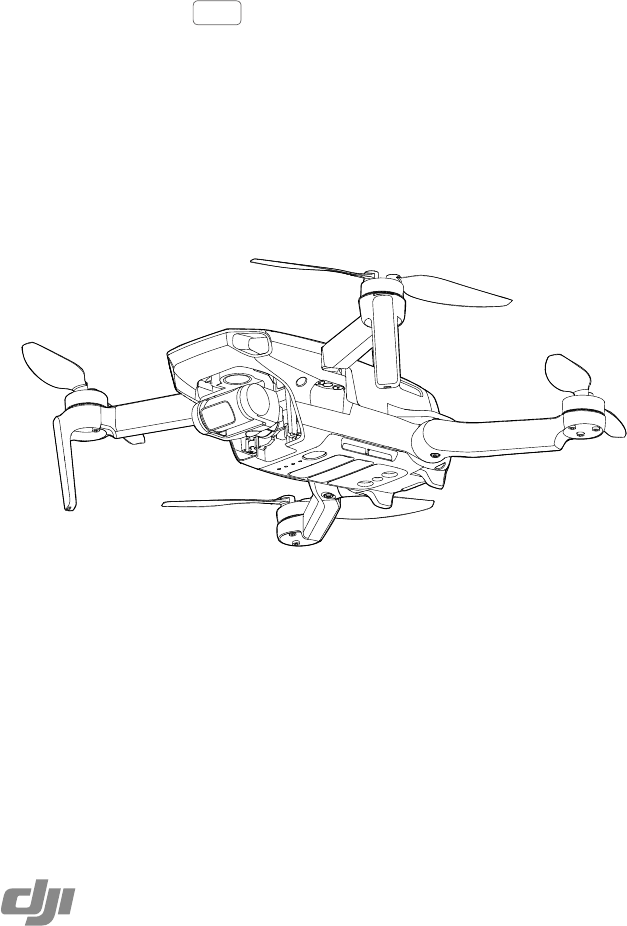 User manual DJI Mavic Mini (49 pages)