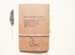 Daucus carota notebook - Mediterranean herbarium collection