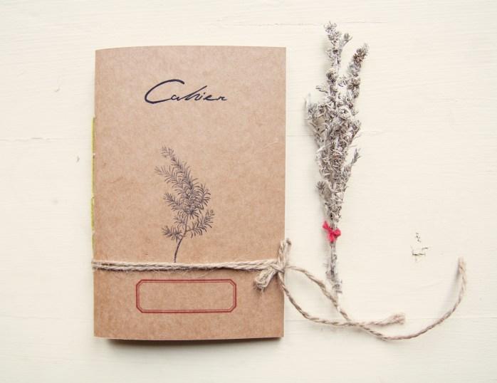 Rosmarinus officinalis notebook - Mediterranean herbarium collection