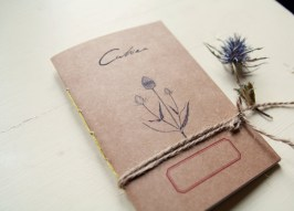 Dipsacus sylvestris notebook - mediterranean herbarium collection