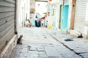 Tunisi - Medina