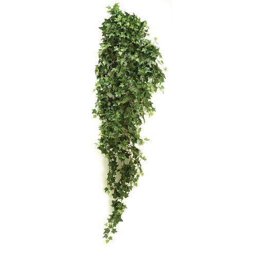 Hedera hangplant groen 125cm