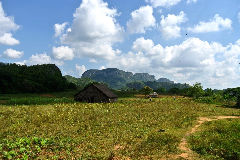 Tobacco farms in the Vinales Valley, Cuba
