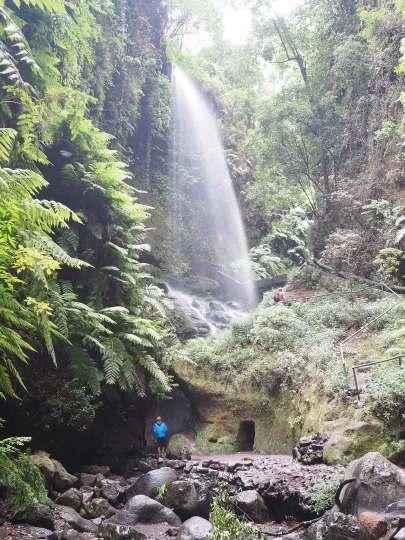 Damien va voir sous la cascade de Los Tilos sur La Palma.