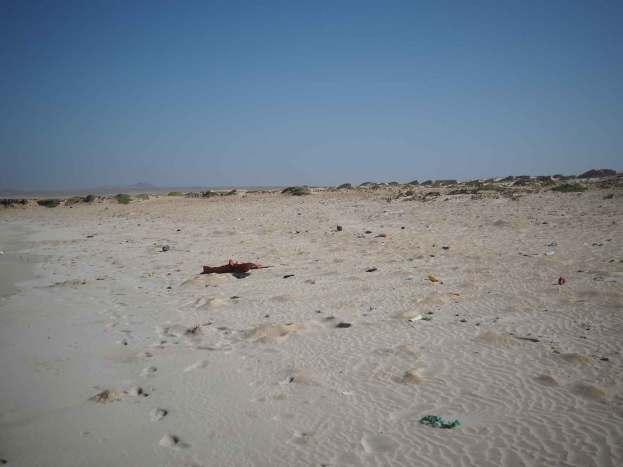 Les déchets plastiques sur la plage de Boa Esperança sur Boa Vista.