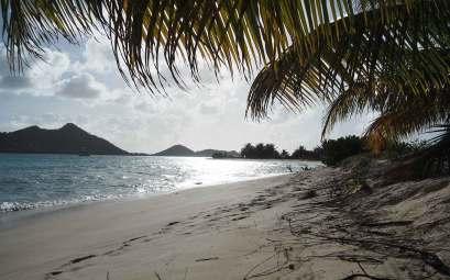La plage de Sandy Island à Carriacou
