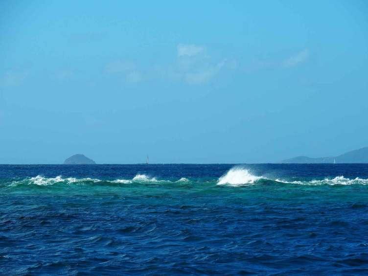 Les récifs de coraux, affleurant à la surface de la mer.