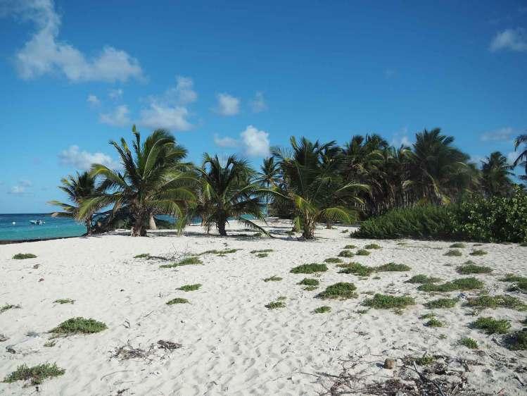 La plage de sable blanc de l'île de Terre de Bas dans la réserve de Petite Terre.