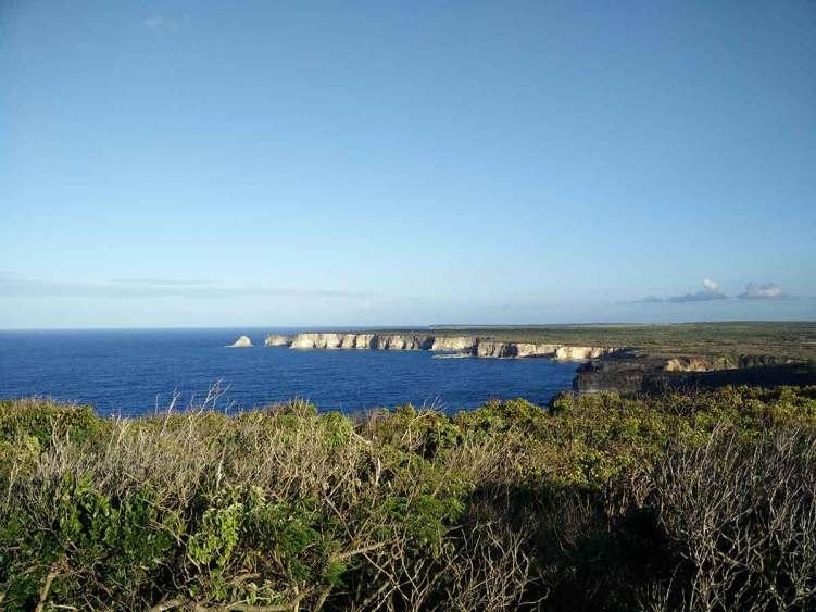 Les falaises de la côte est guadeloupéenne, depuis la Pointe de la Grande Vigie.