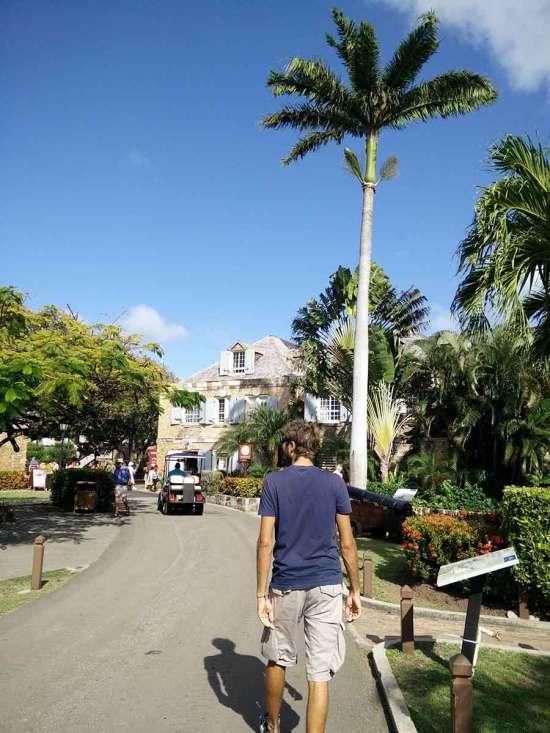 Marche dans le port d'English Harbour, sur l'île d'Antigua.