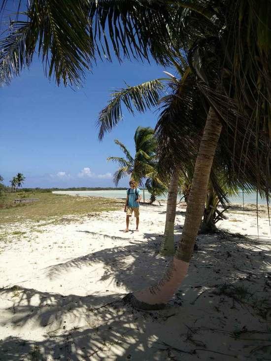 Sous les cocotiers de Mayaguana, aux Bahamas.