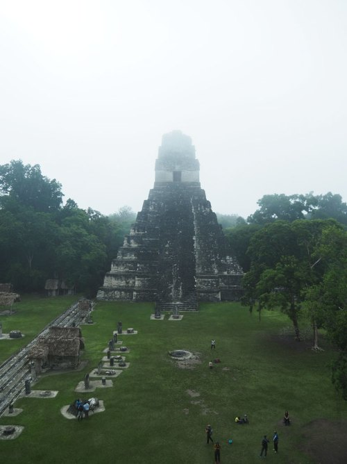 Le Temple du Grand Jaguar à Tikal dans la brume du petit matin.