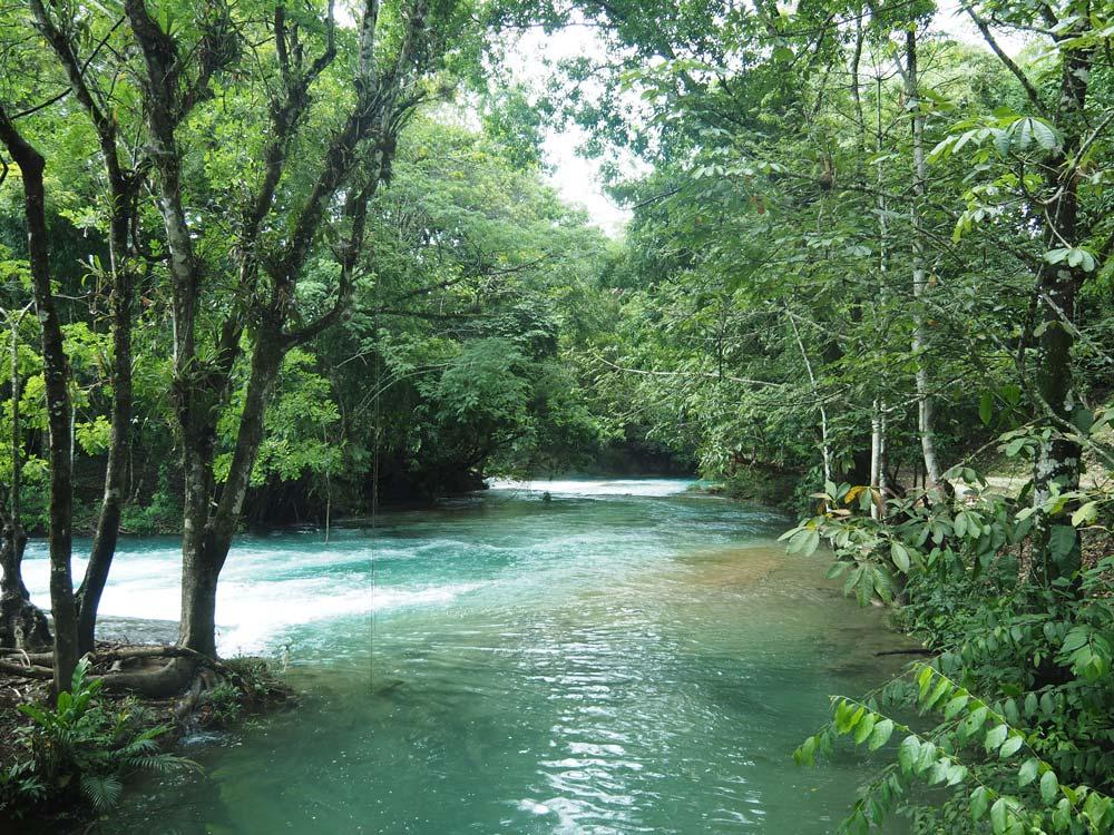 Le calme de la rivière au-dessus des cascades d'Agua Azul, proche de Palenque.