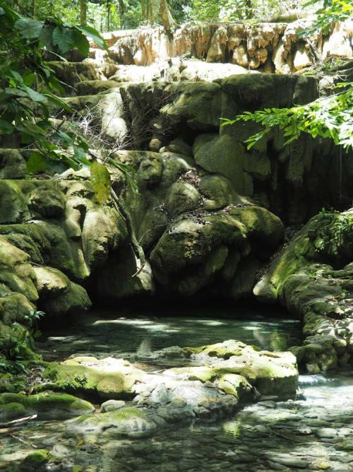 Rivière à travers les ruines de Palenque, au Mexique.