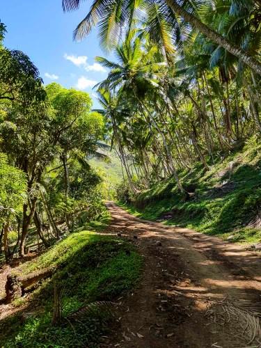 Sentier de randonnée sur l'île de Ua Huka aux Marquises, dans la baie de Vaipee.
