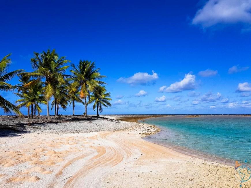 La belle plage rose de coraux et sable sur un motu de Raroia.