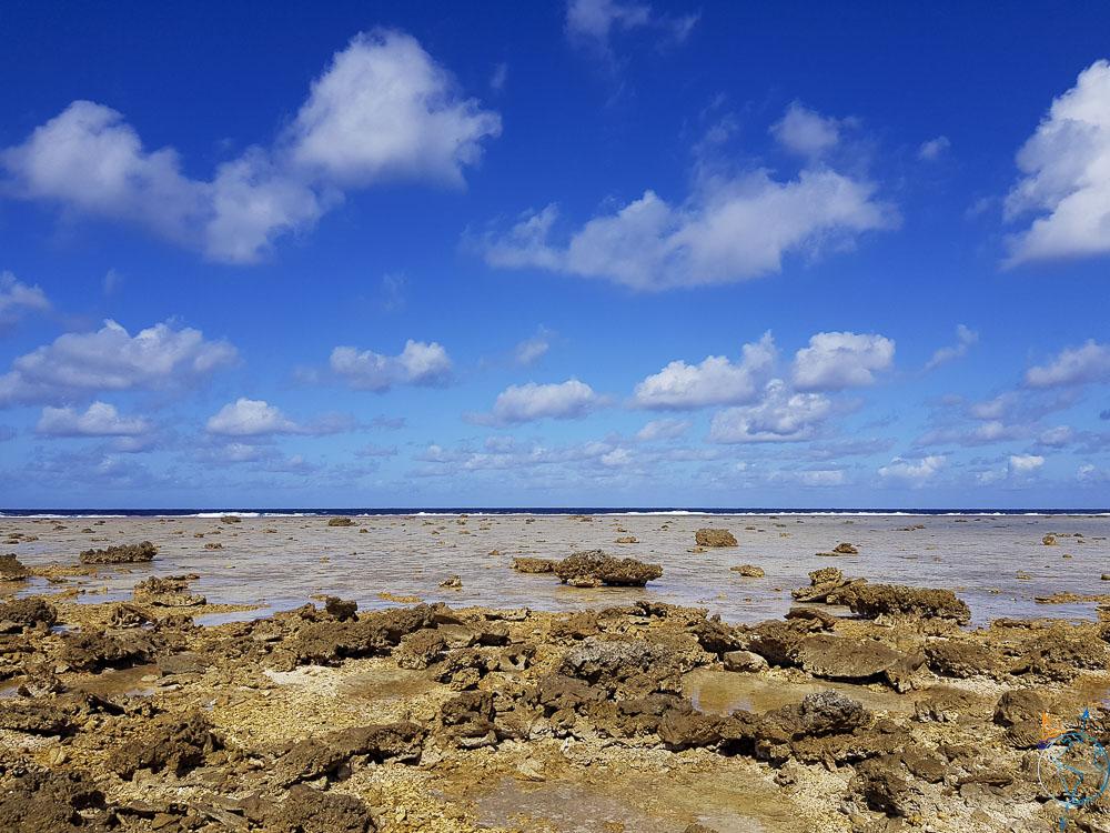 Le platier de corail près de la barrière qui séparer océan et lagon.