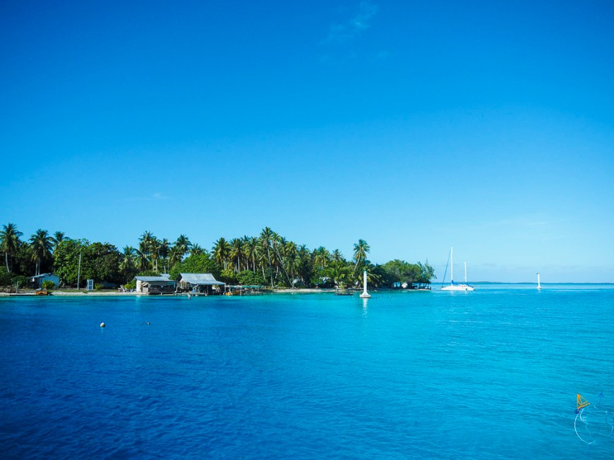 Le motu habité au nord de l'Anse Amyot sur Toau.