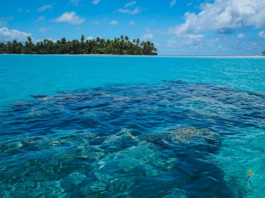 Les coraux vus par transparence dans le Lagon Bleu à Rangiroa.