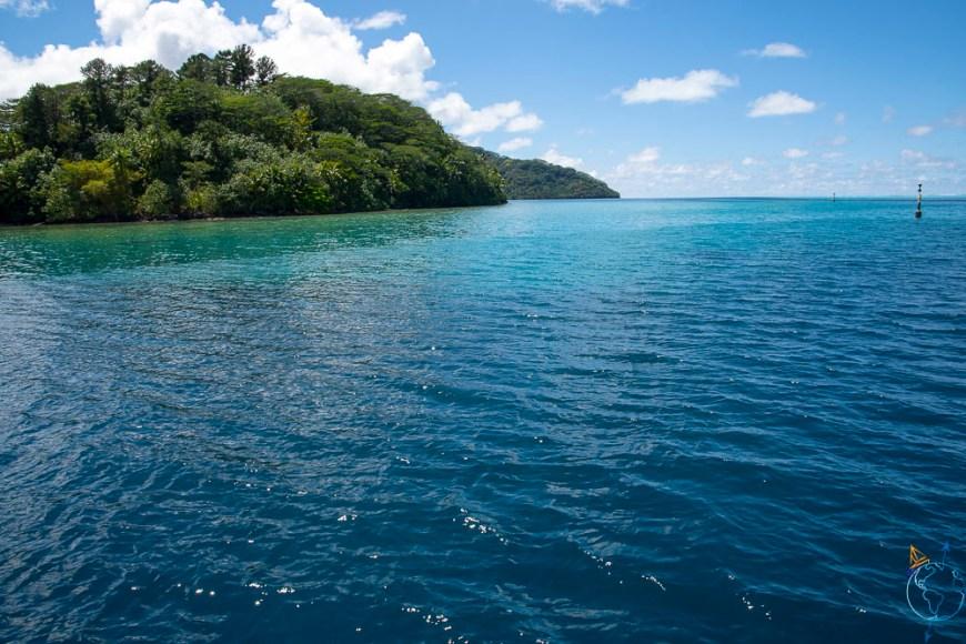 Jungle luxuriante sur l'île de Huahine.