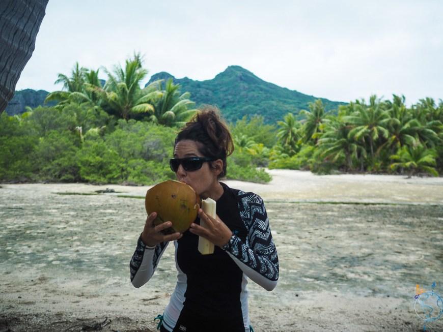 Dégustation d'eau de noix de coco sur Maupiti.