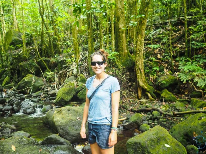 A la recherche d'une cascade dans la forêt, sur la côte ouest tahitienne.