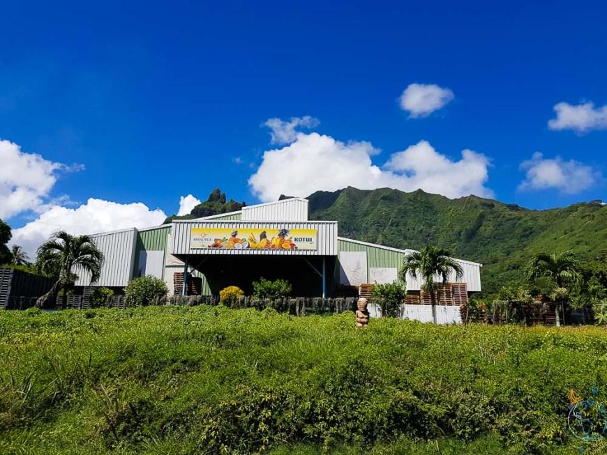 L'usine Rotui au pied du mont du même nom à Moorea.