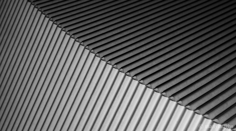 Lines on the curve