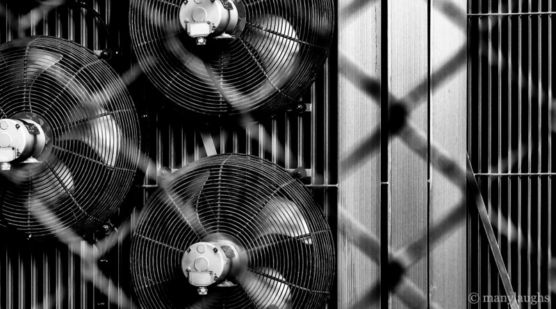 Three fans through wire fence