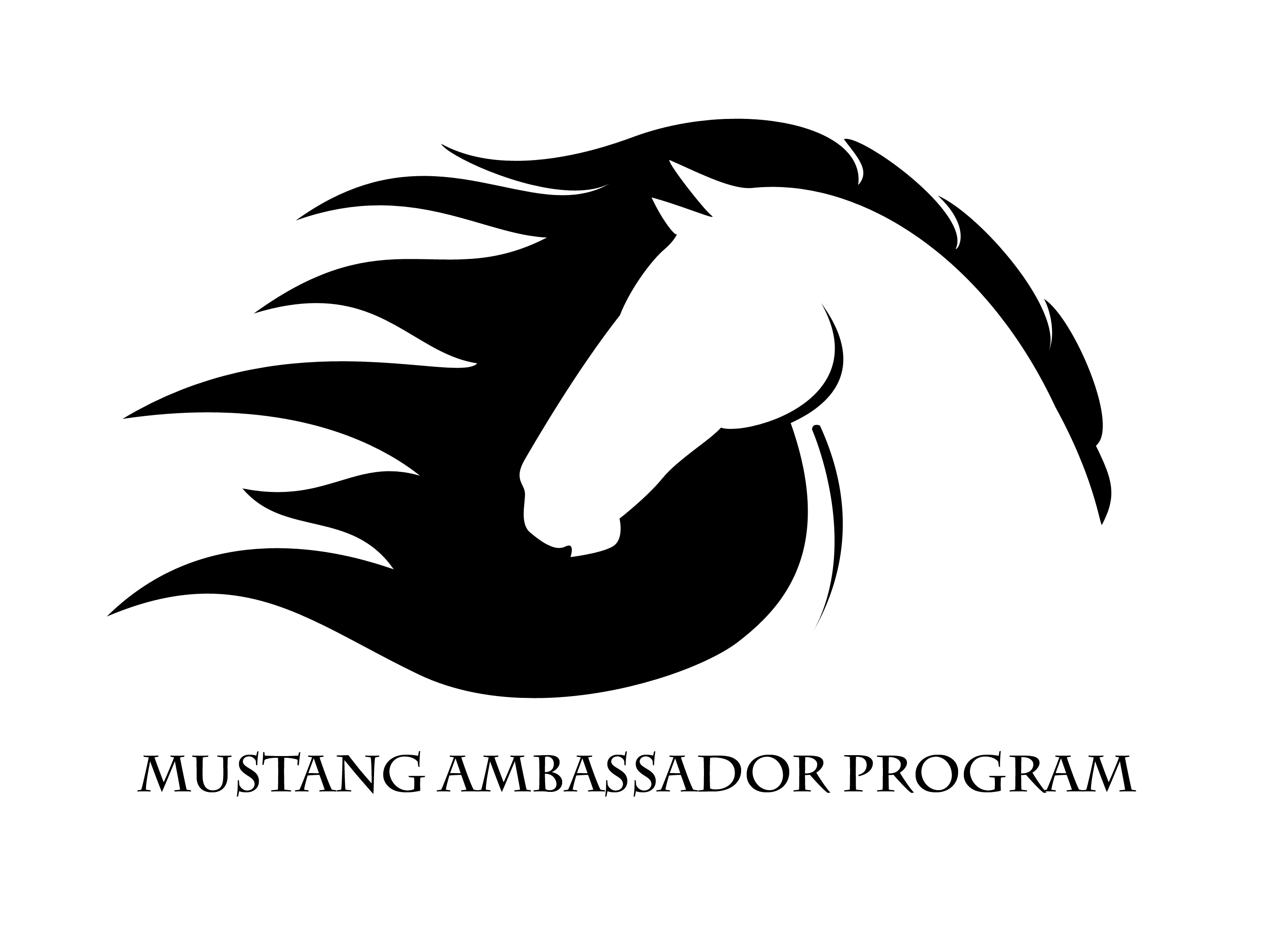 Equine Leadership Camps
