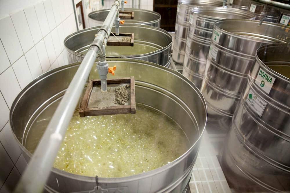 dornas de fermentação da cachaça Coqueiro em Paraty - Rio de Janeiro