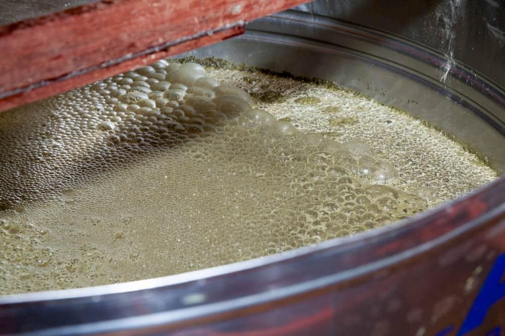 Processo de fermentação da cachaça de alambique