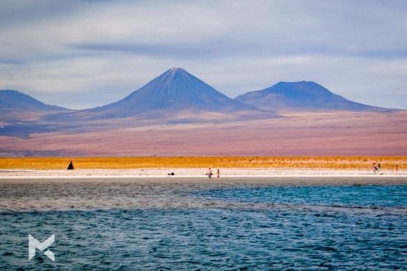 Deserto do Atacama Laguna Cejar