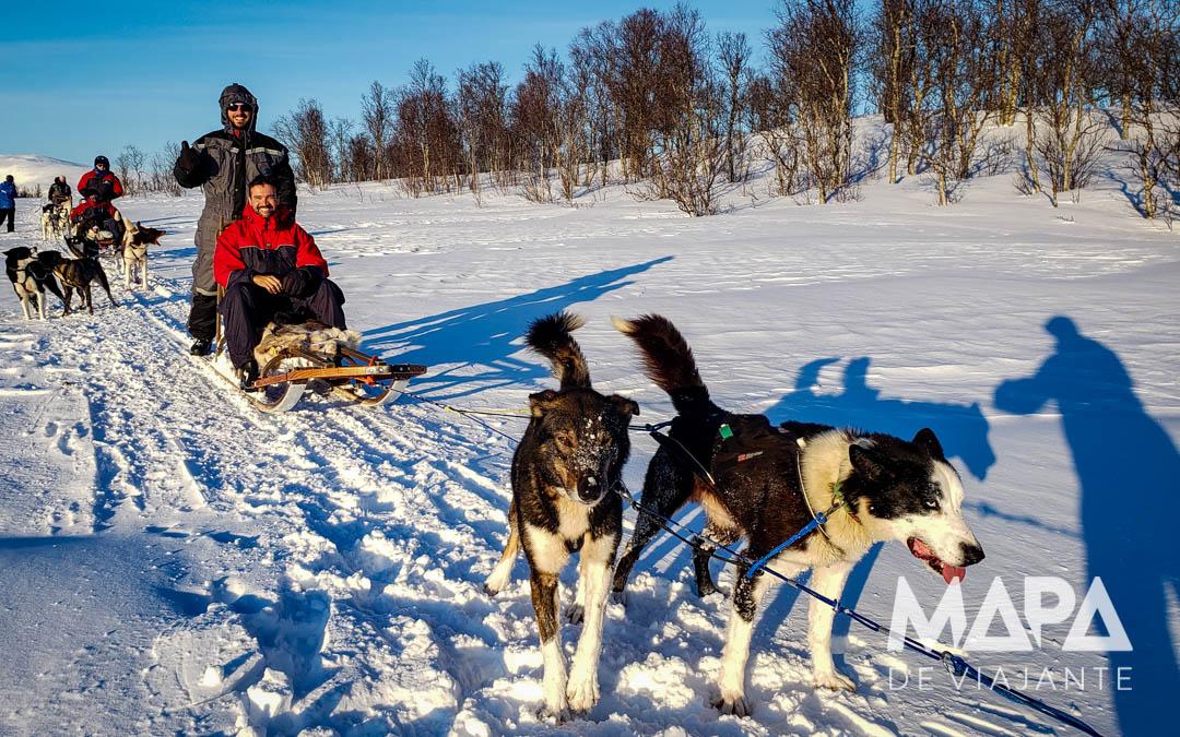 Passeio de Dogsledding Trenó com Ruskies