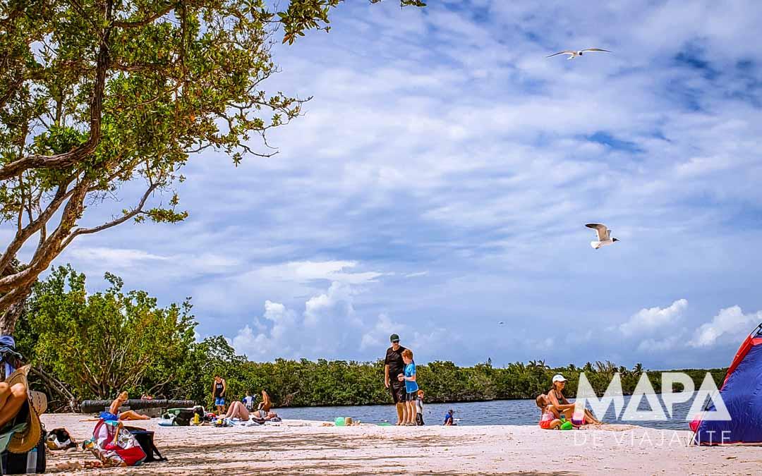 Florida Keys Pennekamp O que fazer