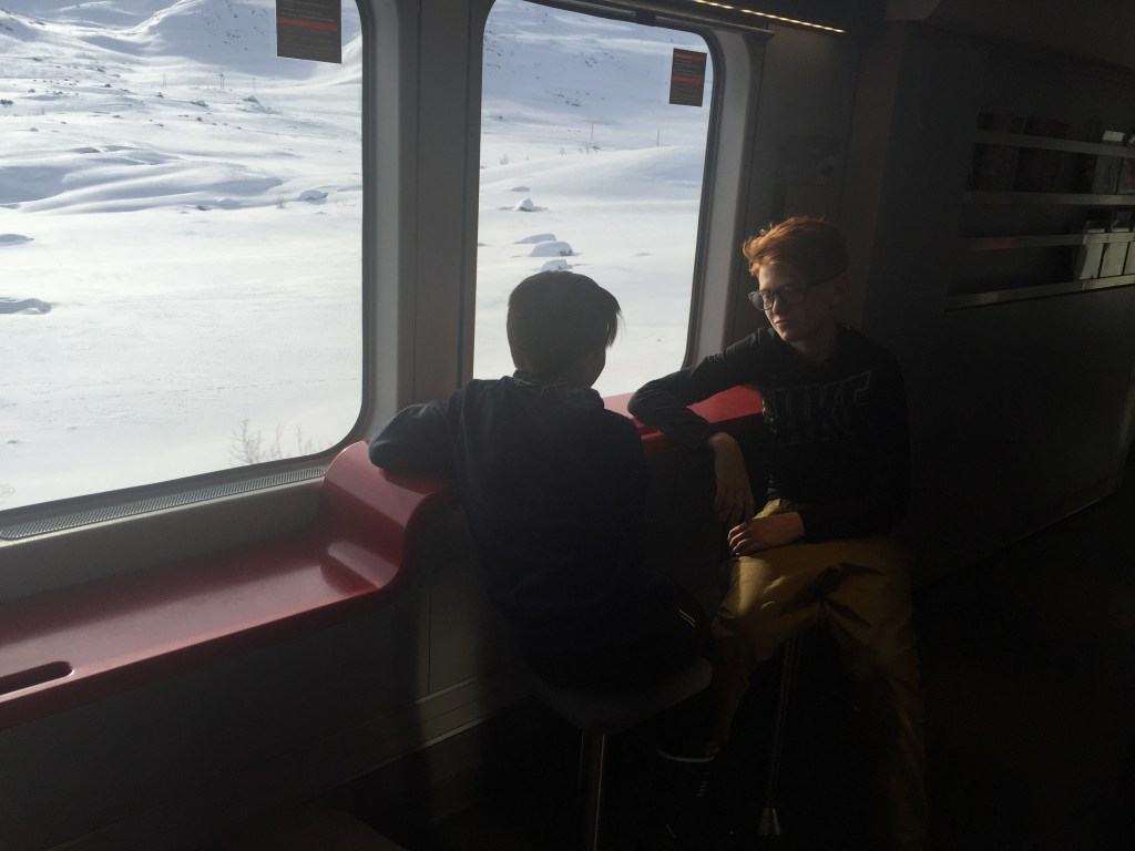 Two boys traveling by train between Oslo and Myrdal in Norway.