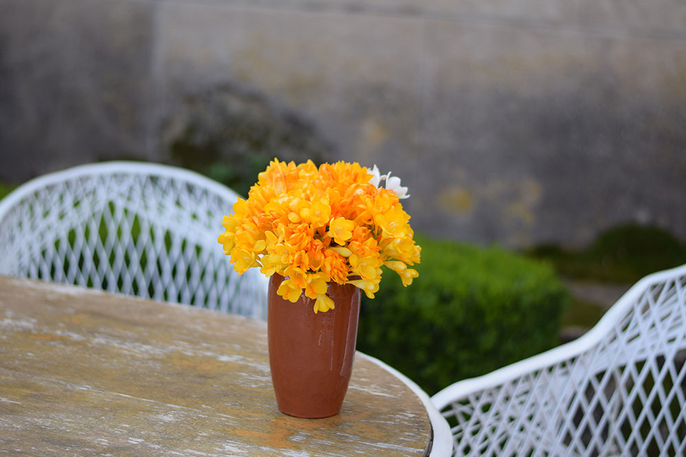 Bright yellow orange flowers in a vase on a garden table at Finca Son Mico in Mallorca, Spain.