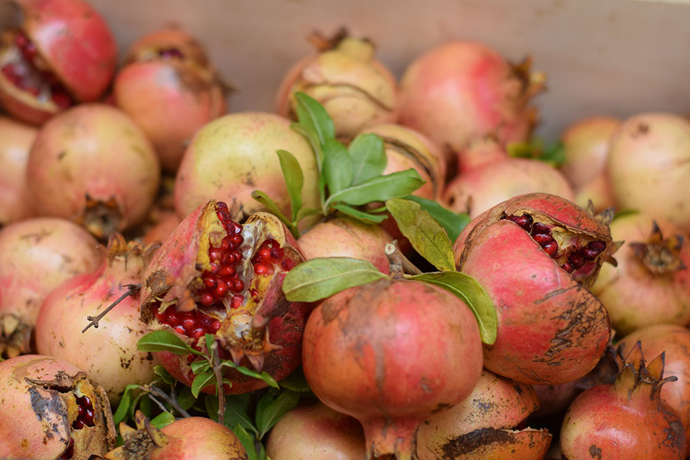 Photograph of ripe pomegranates with seeds bursting out at the Santa Maria market in Mallorca, Spain.