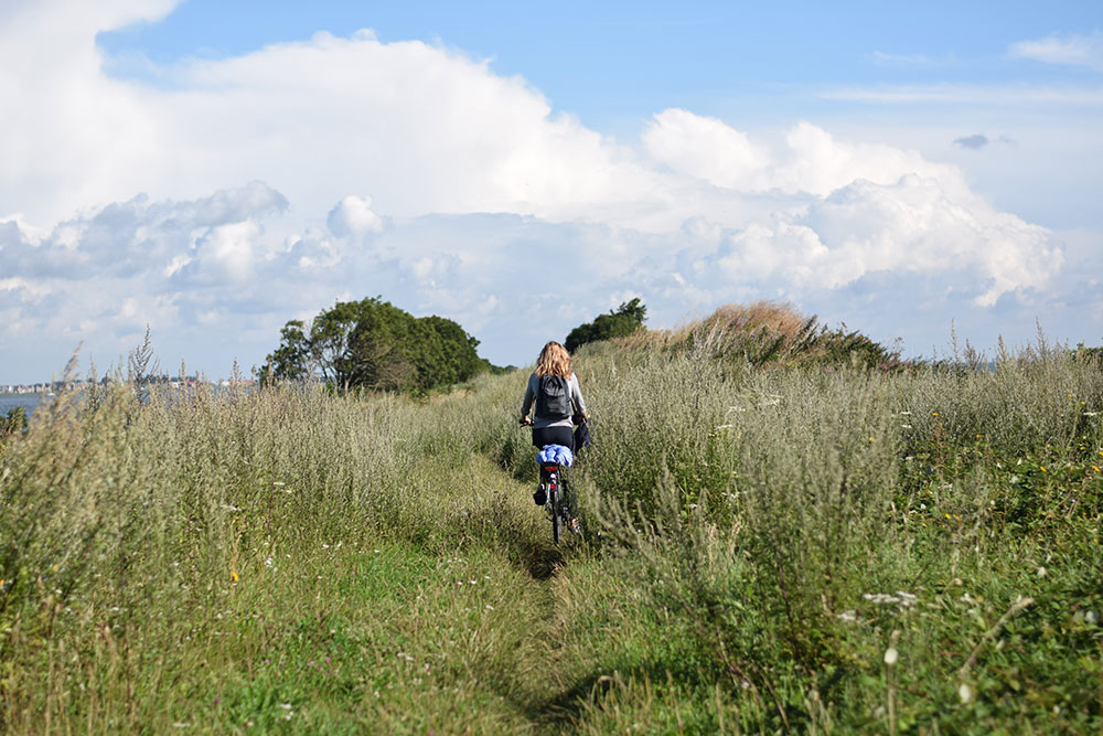 Photo of a woman riding her bicycle along a path through a field in Marken, Waterland in The Netherlands.