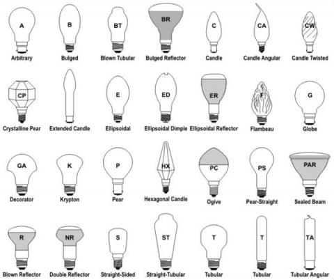 Bulb Sizes Thanks To This Size Chart From Bulbs Take The Number And Divide By 8 That Is Diameter Of At Its Widest Point