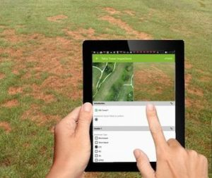 identifying turf disease on golf course using mapgage geospatial golf fieldapp