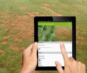 identifying turf disease on golf course using mapgage geospatial golf fieldapp