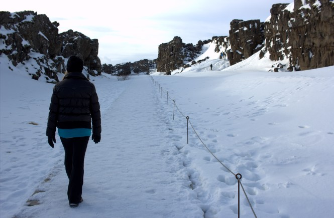 5 Reasons to visit Iceland in winter.
