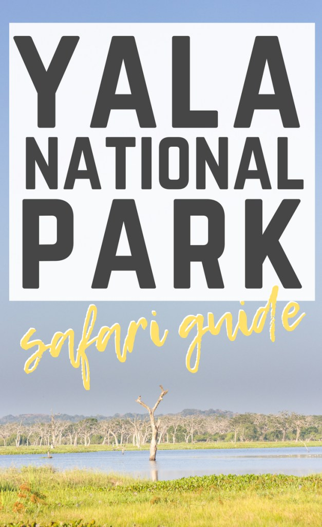 Yala National Park Safari Guide