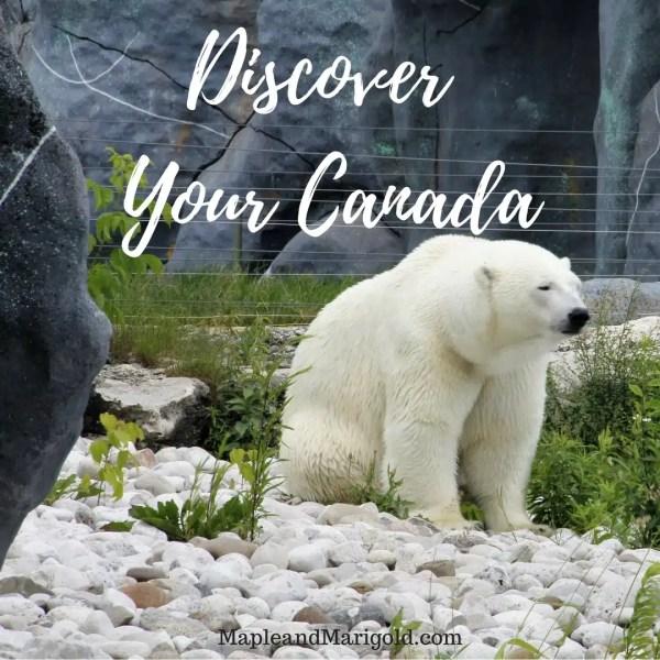 Discover Your Canada | Radisson giveaway | #StayCanada | MapleandMarigold.com | Explore Canada