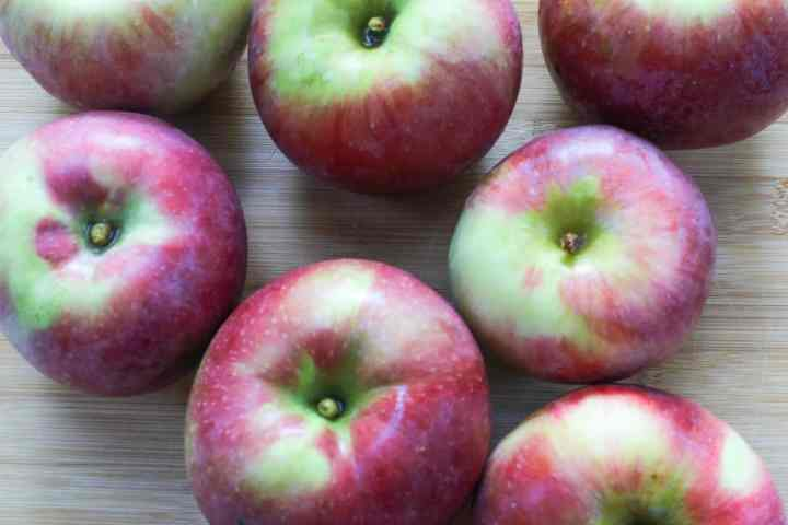 apples for slow cooker maple apple butter